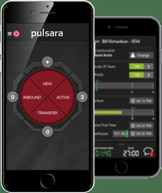 Pulsara-Portfolio